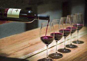 Noble Wine. Винные посиделки с бокалом вина в Zoom