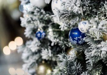 Рождество и Новый год с питерским отелем «Астория» и домом моды Dior