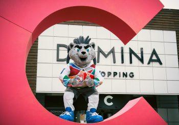 Т/ц Domina Shopping вводит новый концепт уличной торговли