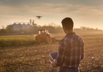 Дроны и искусственный интеллект – как сделать сельское хозяйство будущего более экологичным