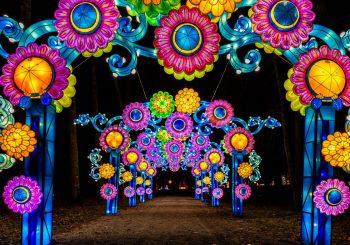 Фестиваль света «Грандиозные китайские фонари»
