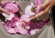 Miss Dior Rose N'Roses или Чем пахнет любовь