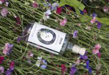 Латвийское предприятие приступило к производству безалкогольного джина