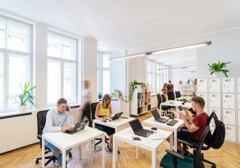 Весной заявки на участие в бизнес-инкубаторах ЛАИР подали 854 новых предпринимателей