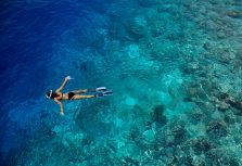 Советы дайверам, собирающимся на Мальдивы, от Флориана Гансла