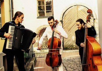 Концерт. Концерт виолончелиста Марка Виленского в рижской церкви