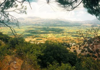 Скрытые жемчужины Крита: рекомендации курорта Abaton Island Resort & Spa