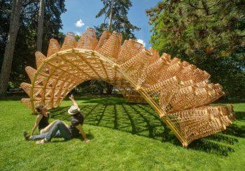 Уникальный объект «Павильон плетения» латвийского архитектора выставлен во французских Альпах