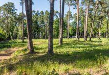 На рынке земли премиум-класса в Латвии в этом году наибольшая активность в Юрмале